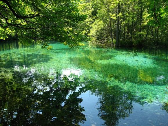 プリトヴィツェ湖群国立公園の画像 p1_18